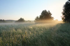 Het landschap van de ochtend royalty-vrije stock foto's