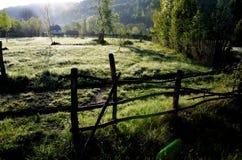 Het landschap van de ochtend Stock Afbeeldingen