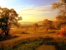 Het landschap van de ochtend Stock Foto