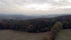 Het landschap van de ochtendherfst op hoogland stock video