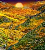 Het landschap van de Papavergebieden van Californië, zon het creasting op horizen het gieten a gloden gloed over kleurrijke heuve stock afbeeldingen