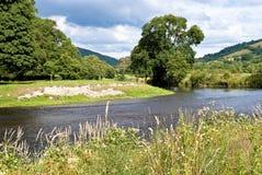 Het Landschap van de rivieroever Stock Foto