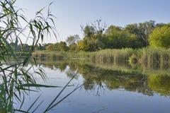 Het landschap van de Rosrivier Stock Foto