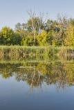 Het landschap van de Rosrivier Stock Afbeelding