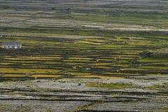 Het Landschap van de rotsmuur Stock Foto