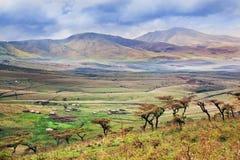 Het landschap van de savanne in Tanzania, Afrika Royalty-vrije Stock Foto's