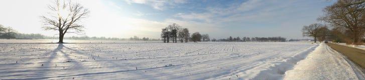 Het landschap van de sneeuw Royalty-vrije Stock Foto's