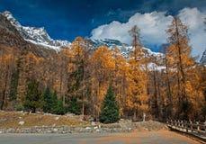 Het landschap van de sneeuwberg Royalty-vrije Stock Afbeelding