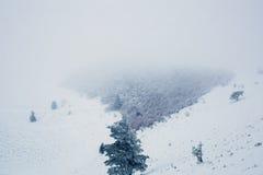 Het landschap van de sneeuwberg tijdens de winter Royalty-vrije Stock Foto