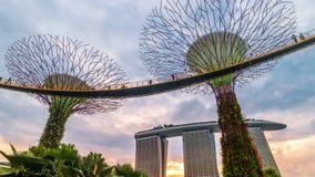Het Landschap van de Timelapsezonsondergang van Tuinen door de baai in Singapore Augustus 2017 stock video