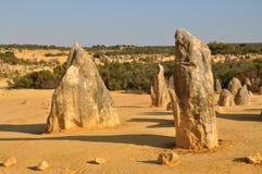 Het Landschap van de toppenwoestijn: Nambung Nationaal Park, Westelijk Australië Stock Fotografie