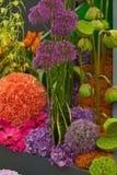 Het landschap van de tuin Royalty-vrije Stock Afbeeldingen
