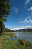 Het landschap van de vakantie dat door bergen, bomen, rivier en riet wordt omringd. Stock Foto
