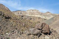 Het landschap van de Vallei van de dood Stock Foto's