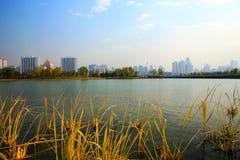Het landschap van de voorstad Stock Foto's