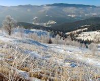 Het landschap van de winter (10) stock fotografie