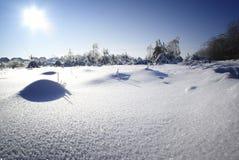 Het landschap van de winter. Royalty-vrije Stock Afbeeldingen
