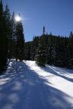Het landschap van de winter. Stock Afbeeldingen