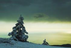 Het landschap van de winter Stock Foto