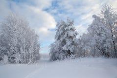 Het landschap van de winter. Royalty-vrije Stock Foto