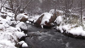 Het landschap van de winter stock videobeelden