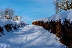 Het landschap van de winter Royalty-vrije Stock Afbeeldingen