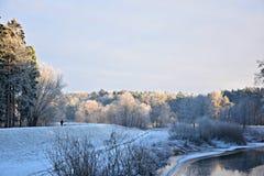 Het landschap van de winter Stock Afbeeldingen