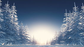 Het landschap van de winter stock footage