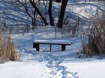 Het landschap van de winter. stock foto's