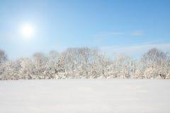 Het Landschap van de winter Stock Foto's
