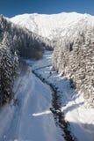 Het landschap van de winter in Adelboden Stock Fotografie