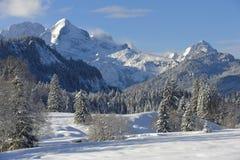 Het landschap van de winter in Beieren Stock Foto's