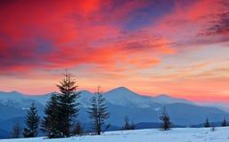Het Landschap van de winter bij Zonsondergang stock foto's