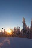 Het landschap van de winter bij zonsondergang Stock Afbeelding