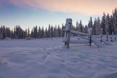 Het landschap van de winter bij zonsondergang Stock Foto