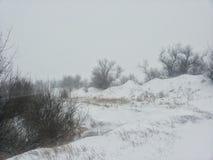 Het landschap van de winter Bomen onder de dekking van een de winterblizzard Achtergrond op een de winterthema Stock Fotografie