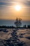 Het landschap van de winter in Centraal Rusland Stock Fotografie