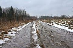 Het landschap van de winter in dooi Royalty-vrije Stock Afbeeldingen