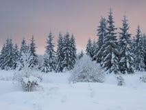 Het landschap van de winter door bos Royalty-vrije Stock Afbeeldingen