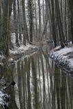 Het landschap van de winter in Duitsland Royalty-vrije Stock Foto's