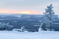 Het landschap van de winter/eenzame boom, zon en vallei stock foto's