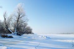 Het landschap van de winter met bevroren rivier Stock Foto's