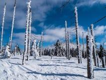 Het landschap van de winter met blauwe hemel royalty-vrije stock foto