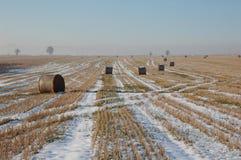 Het landschap van de winter met bundels Stock Afbeeldingen