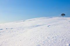 Het Landschap van de winter met Copyspace Stock Foto