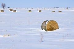 Het Landschap van de winter met de Balen van het Hooi Stock Foto