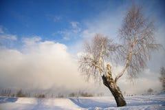 Het landschap van de winter met donkere wolken die over hemel komen Royalty-vrije Stock Afbeeldingen