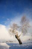 Het landschap van de winter met donkere wolken die over hemel komen Royalty-vrije Stock Foto