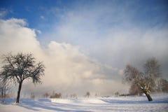 Het landschap van de winter met donkere wolken die over hemel komen Royalty-vrije Stock Fotografie