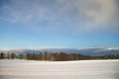 Het landschap van de winter met donkere wolken die over hemel komen Stock Foto's